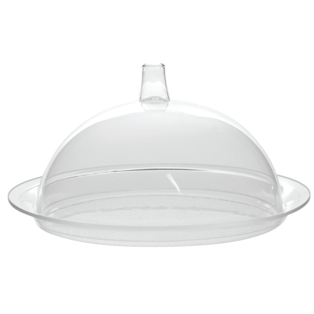 Small Plastic Dome and Tray for Countertop Use