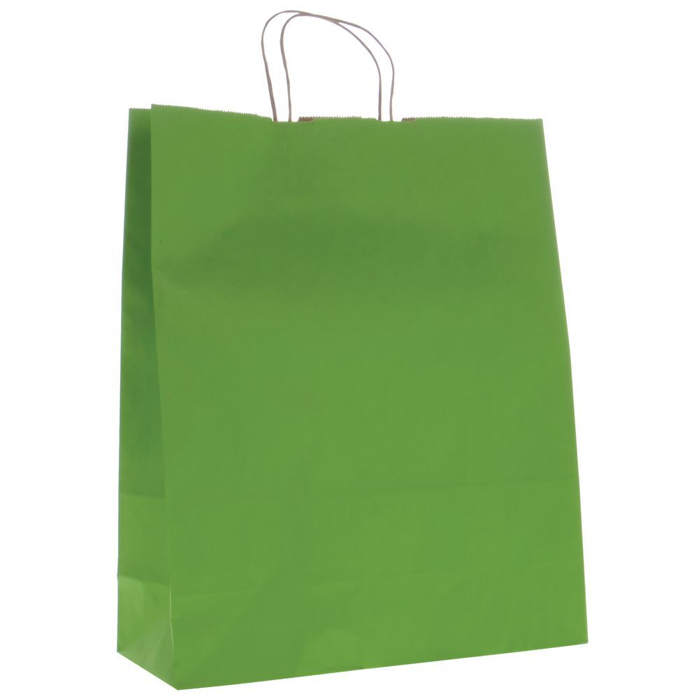 Green Shadow Stripe Kraft Paper Shopping Bags With Handles 16 L