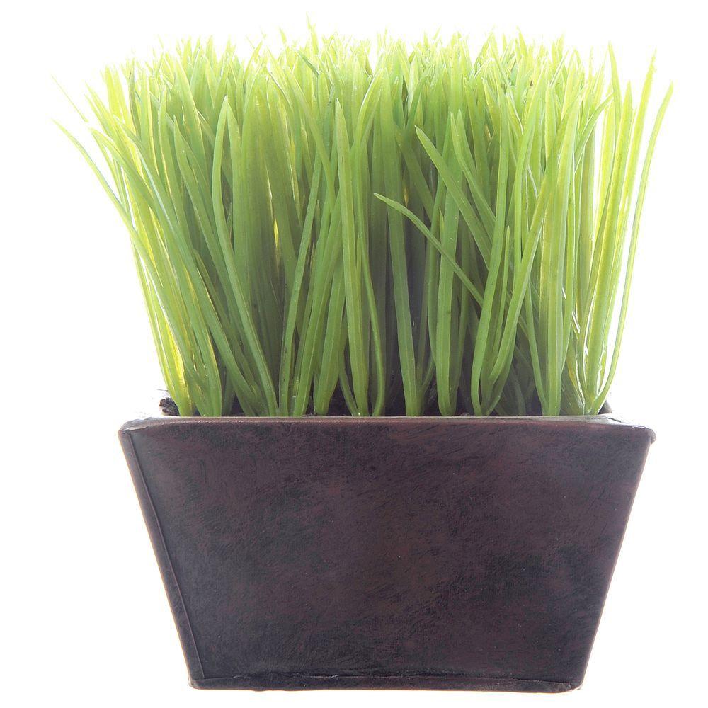 Green Plastic Wheat Grass Planter 5 1 2l X 5 1 2w X 7h