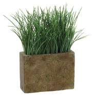 GRASS IN RECT.CONTAINER, 9""