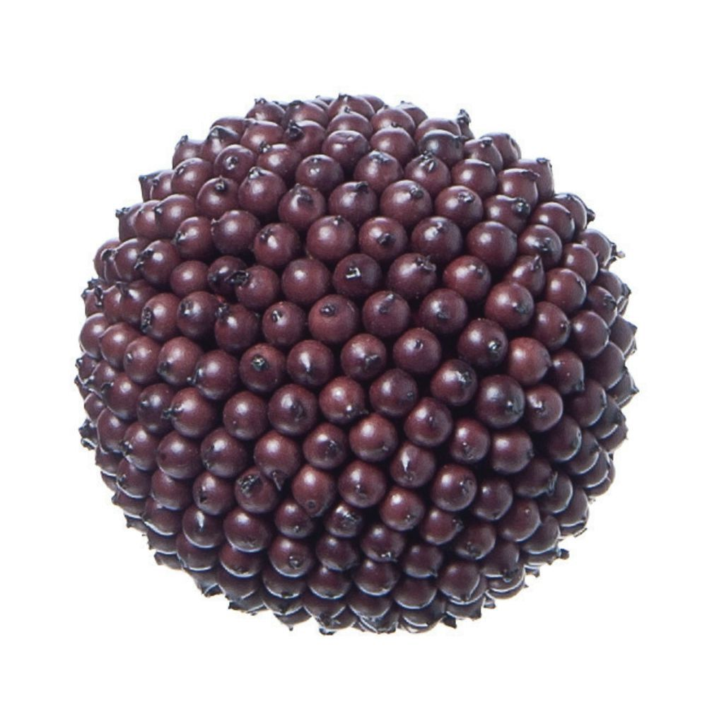 "CO BALL, DECO BERRY, CHOCOLATE, 4""DIA"