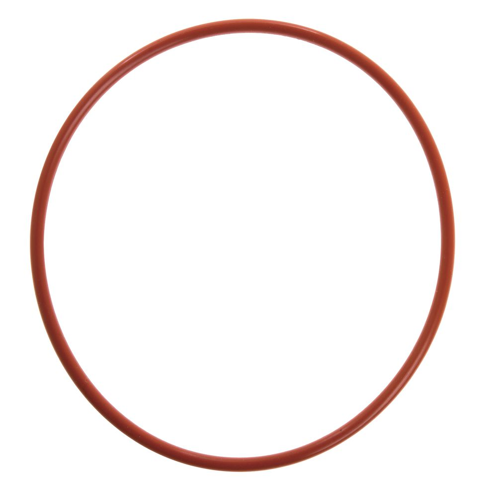 SEAL, 0-RING FOR 45569 (GASKET)