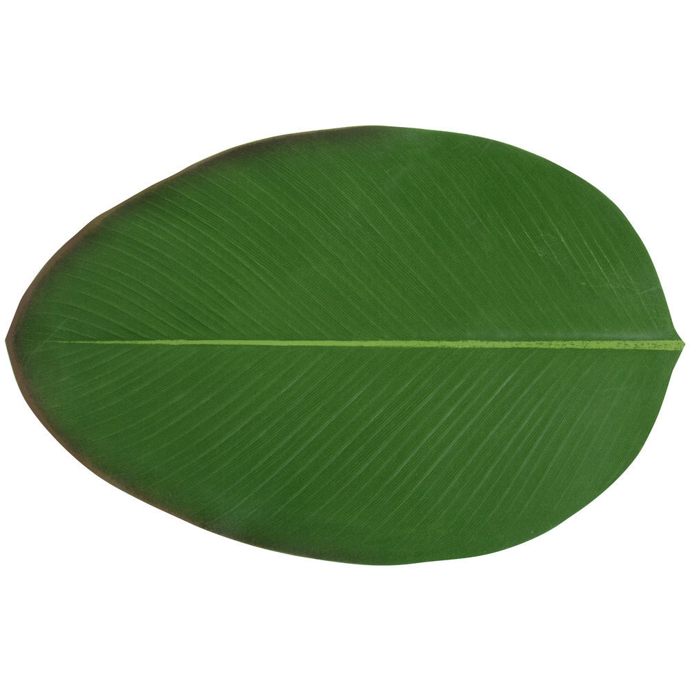 PLACEMAT, BALIHAI, HELICONIA, 18.9 X 12.2 X