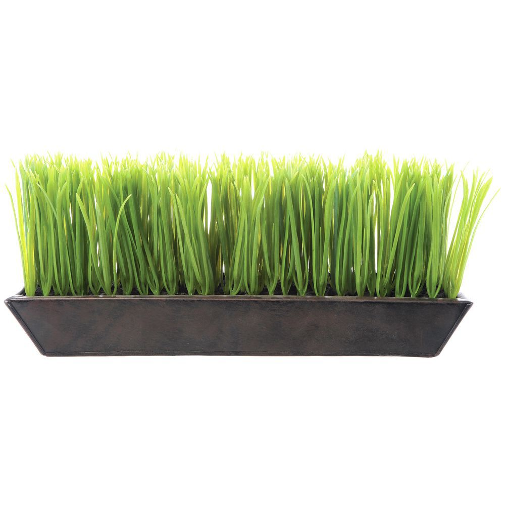 Green Plastic Wheat Grass Planter 13l X 3w X 6h
