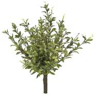 BUSH, OREGANO, GRN/WHT 16""