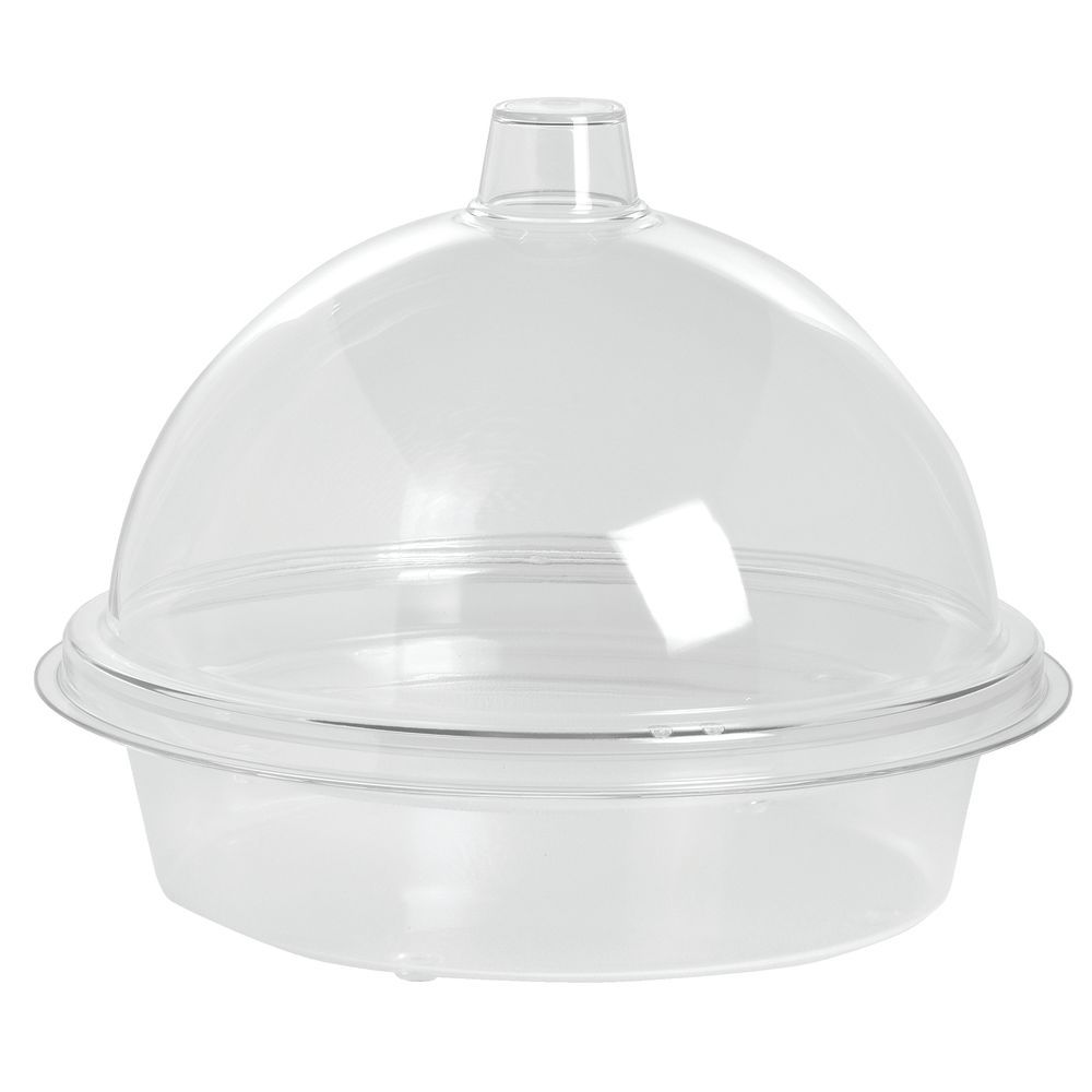 Cheese Tray with Lid is Transparent