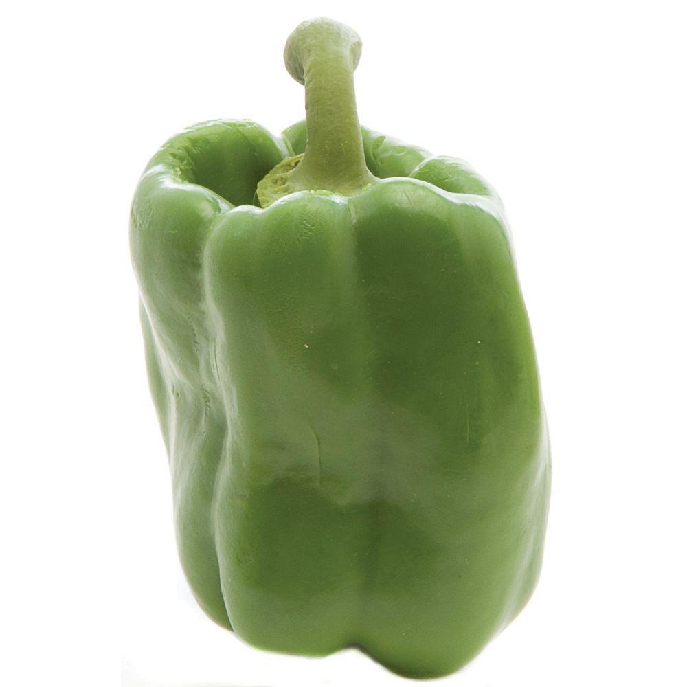 REPLICA, GREEN BELL PEPPER