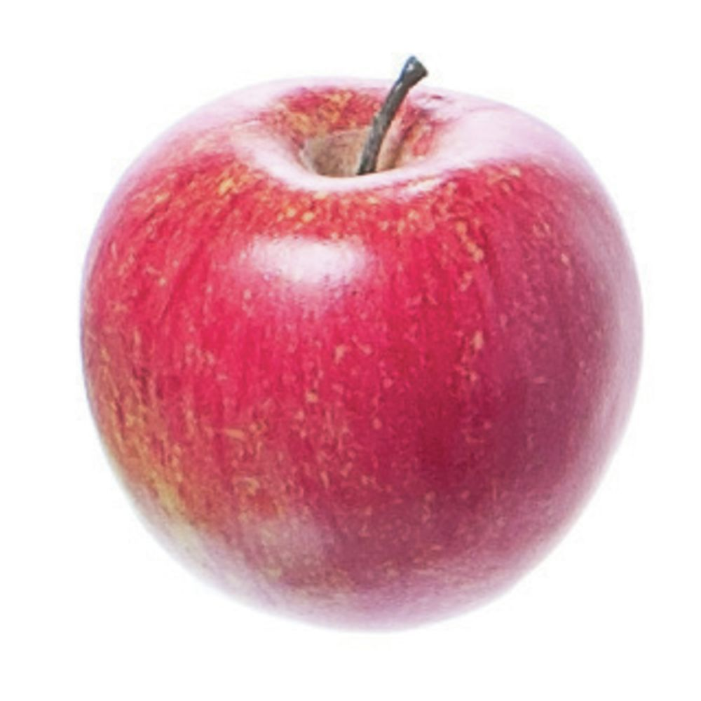 """APPLE, WEIGHTED, TWO-TONE RED, 3"""""""