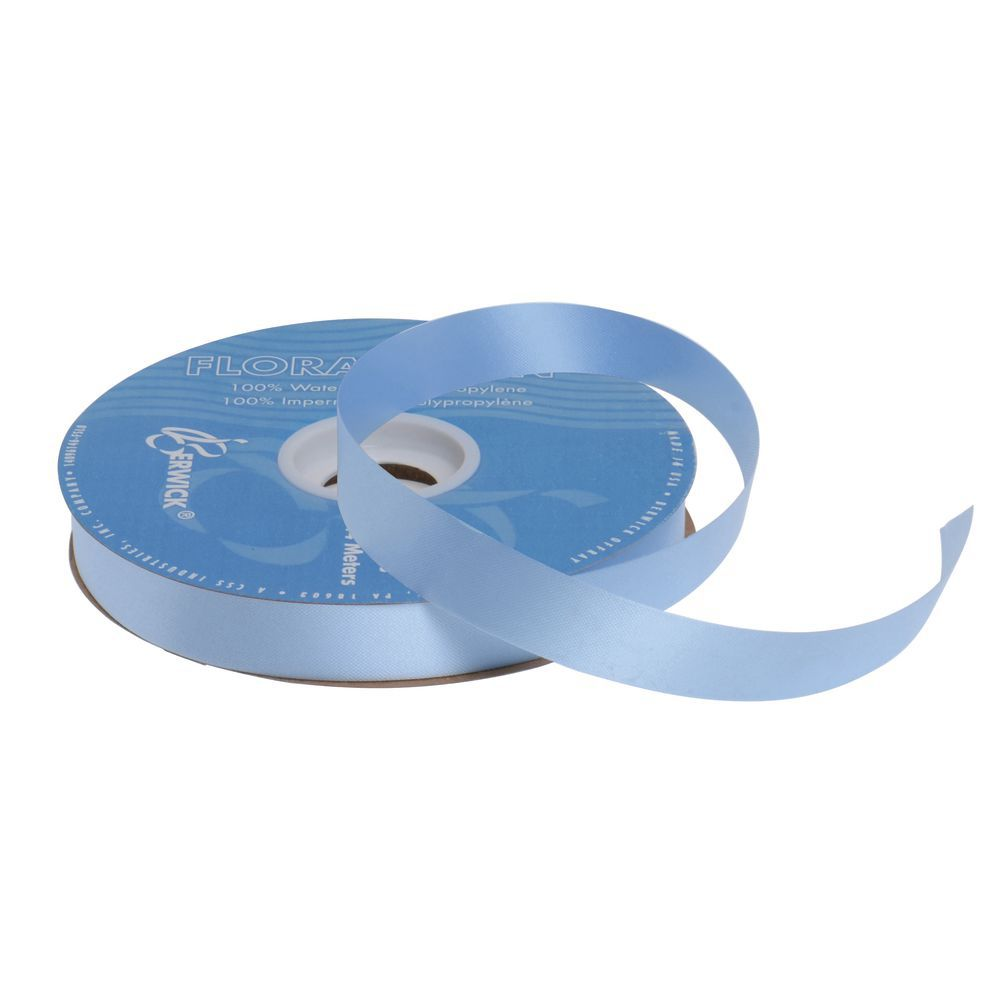 Light Blue Decorative Ribbon, 7/8 (W)