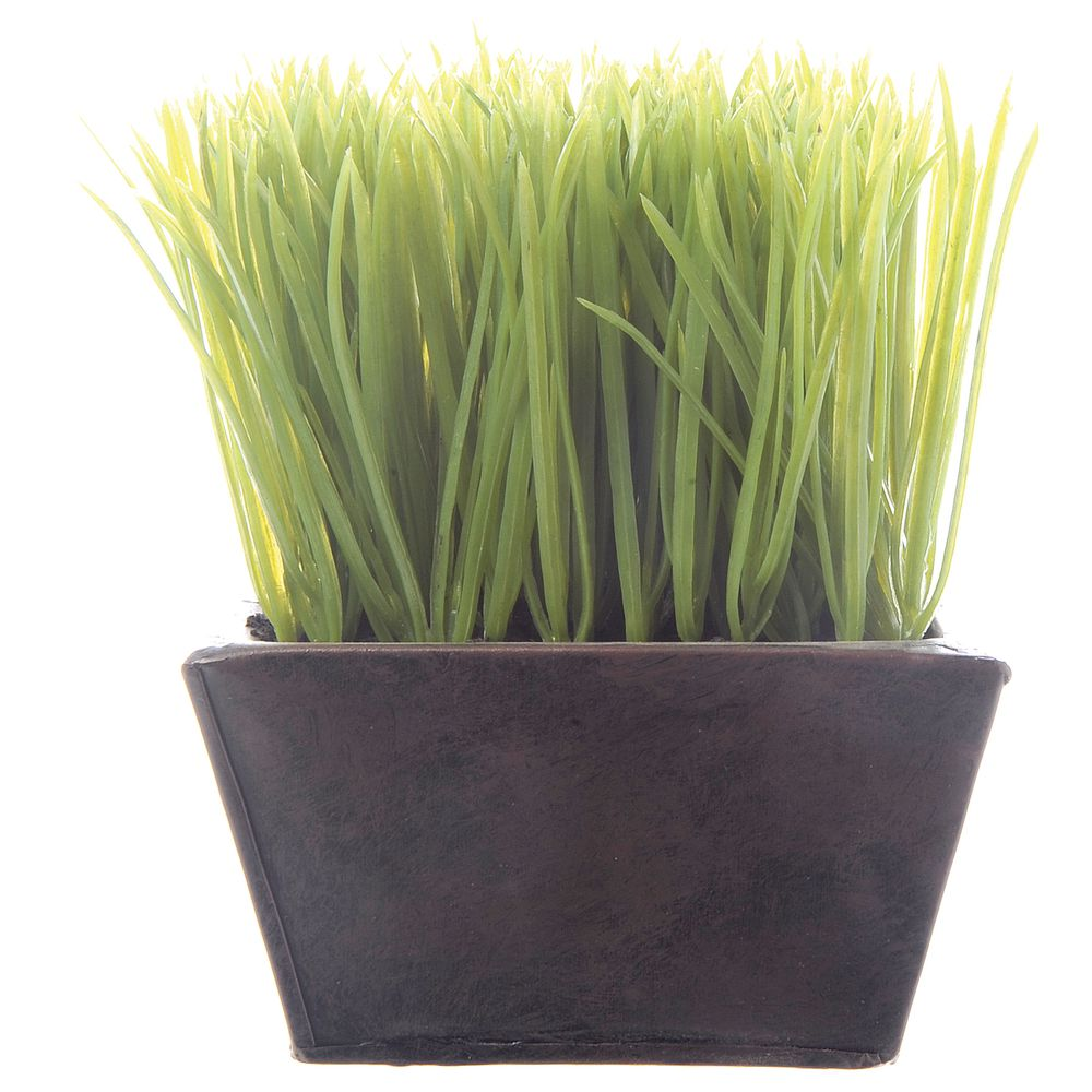 PLANTER, WHEAT GRASS, SM, D.BROWN, 5.5X5.5X7