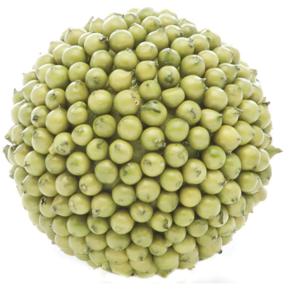 "Berry Balls Pear Green 4""Dia"