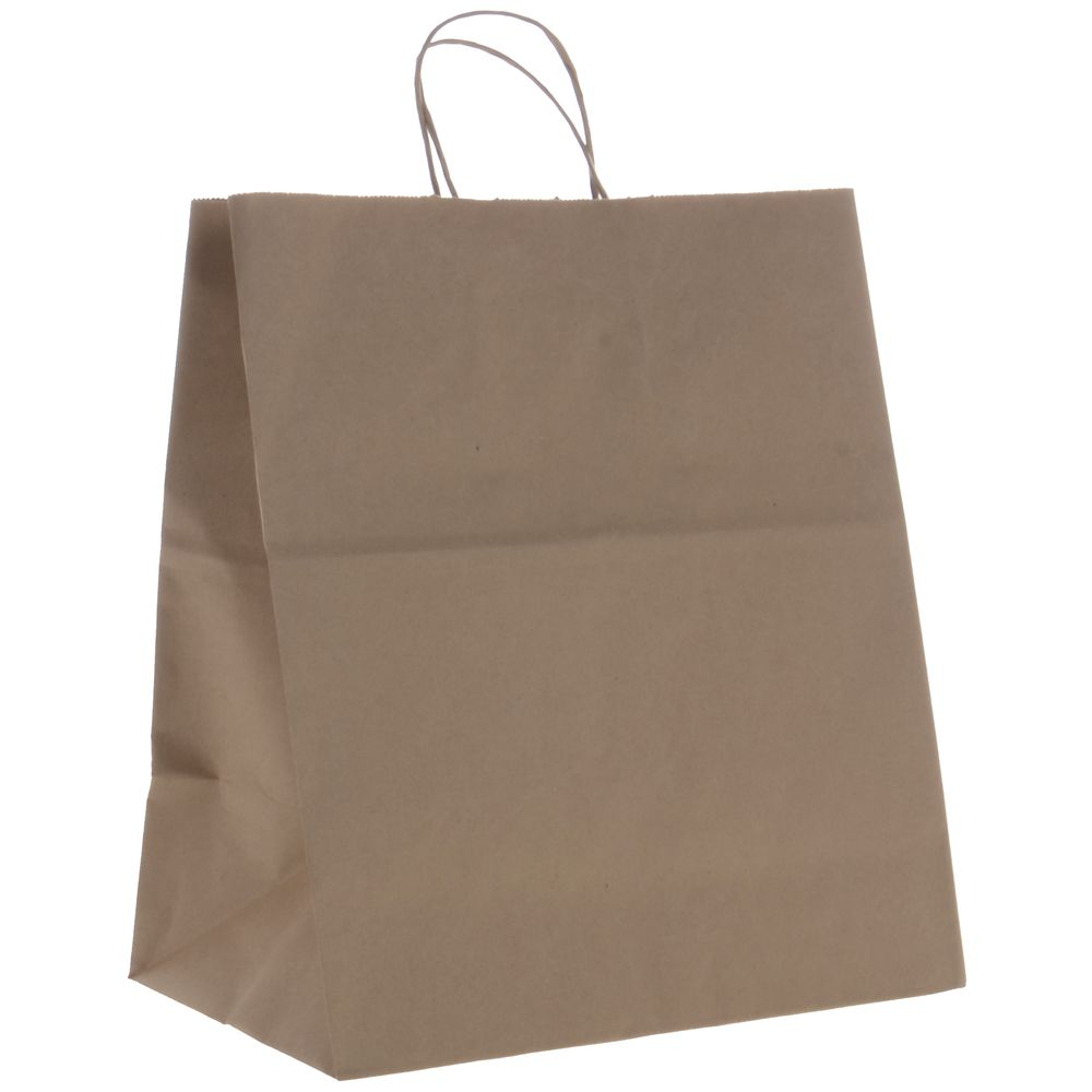 "Brown Paper Bag, 16"" x 13"""