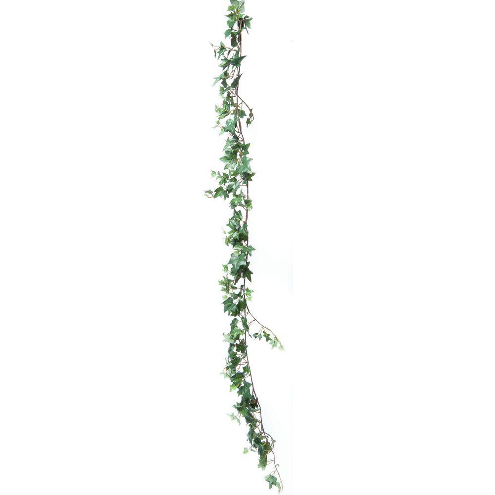 Sage English Ivy