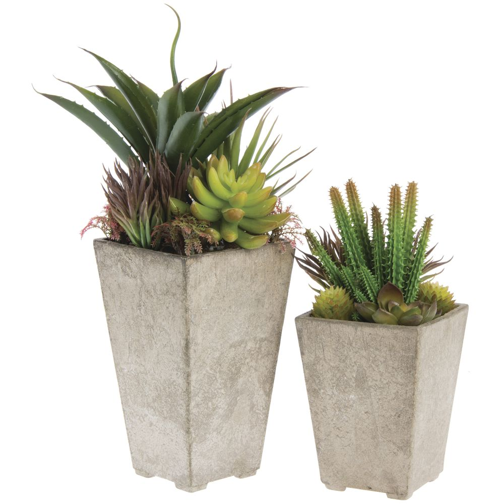 artificial succulents in pots set 2. Black Bedroom Furniture Sets. Home Design Ideas