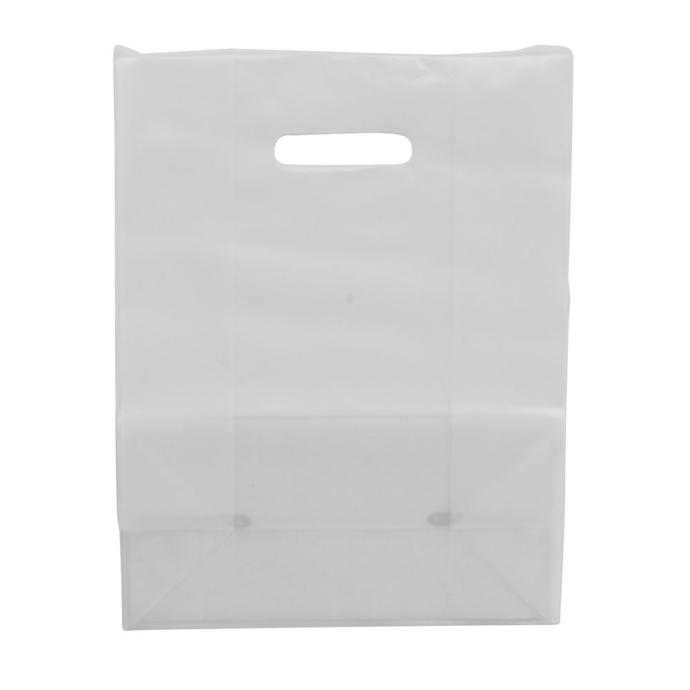 Large Clear Gift Bags 10 x 13