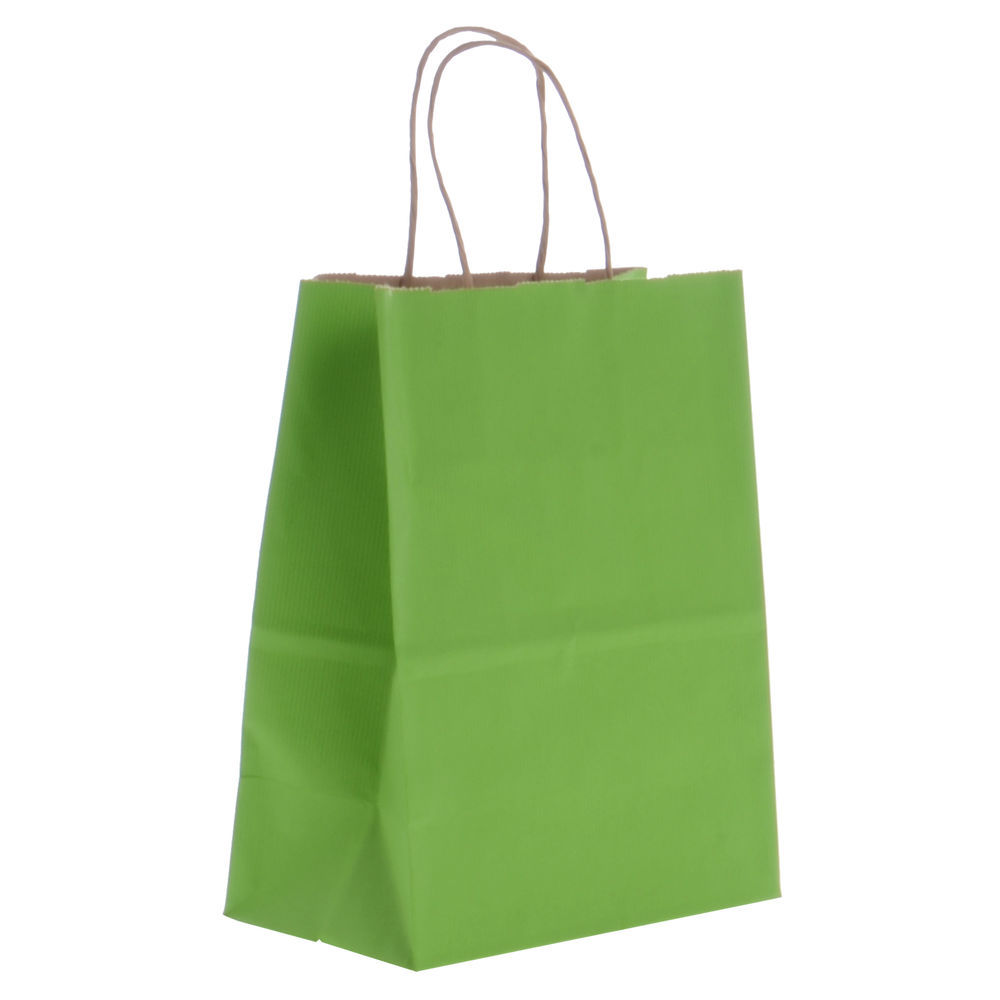 Paper Shopping Bags with Twisted Rope Handgrips