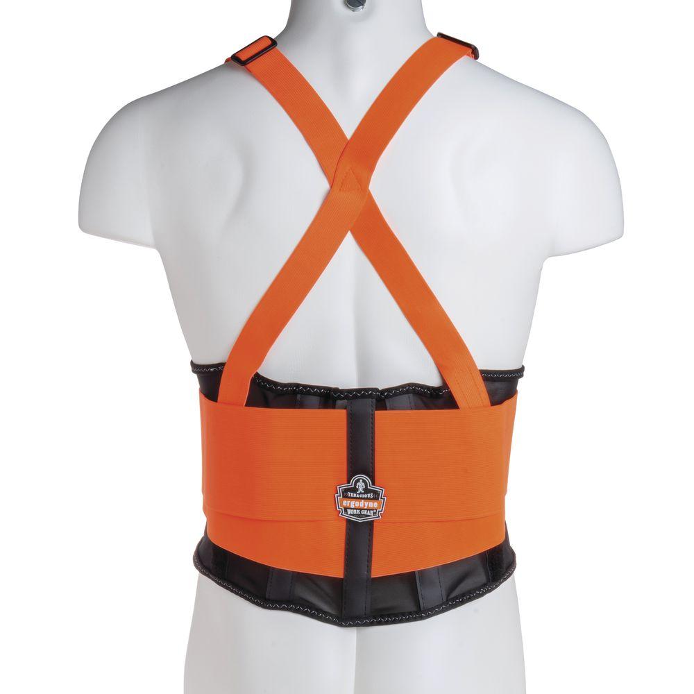 Large Lower Back Support Belt