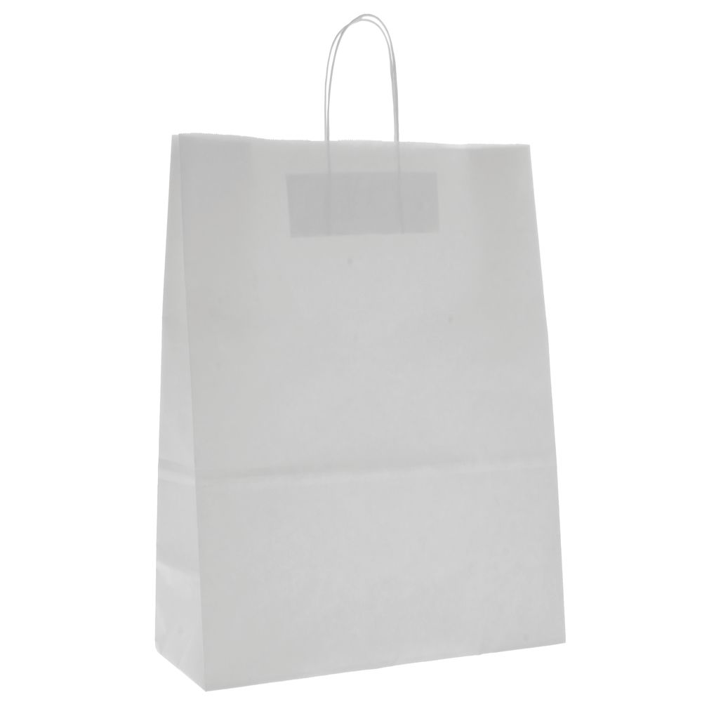 Kraft Paper Bags with Classic Style