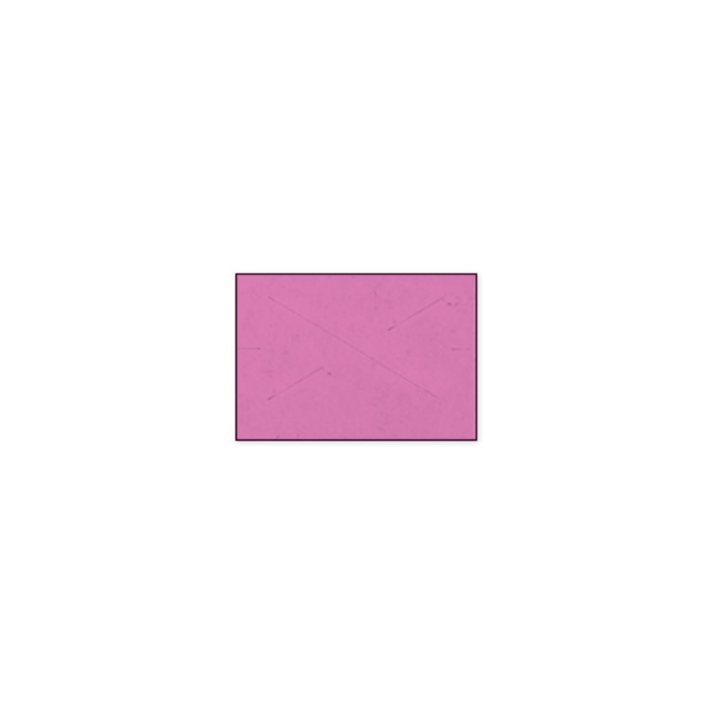 LBL, 18-6, FLR PINK PLAIN